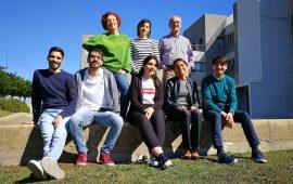 Cannabis in gravidanza: uno studio dell'Università di Cagliari