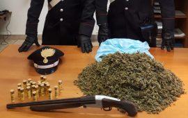Carbonia: vanno a casa sua perchè sospettato di furto, ma trovano un chilo di marijuana, fucile e cartucce