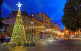 L'albero di Natale in piazza Garibaldi a Cagliari in uno scatto prima dell'alba realizzato da Stefano Marrocu