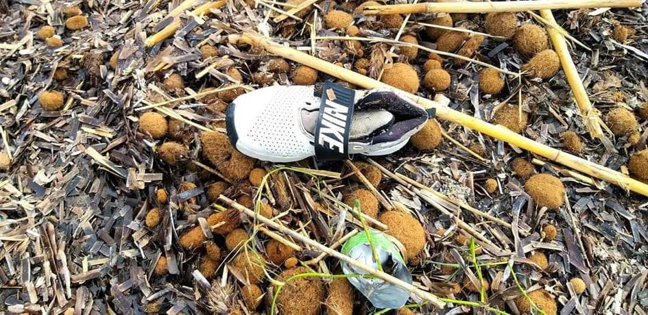 rifiuti-poetto-mareggiate (25)