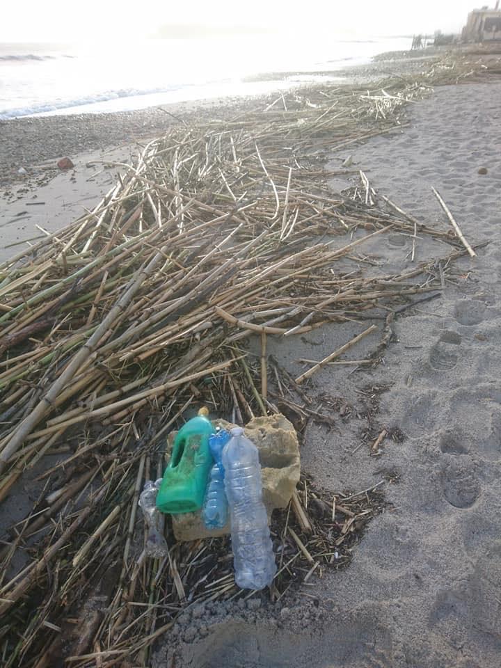 rifiuti-poetto-mareggiate (30)