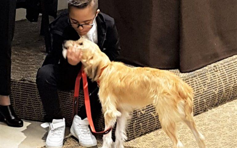 """Anche a Cagliari i cani """"salvavita"""" per i diabetici: la storia di Remy e del suo padroncino"""