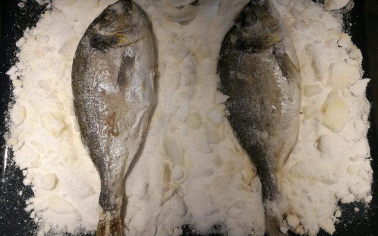 La ricetta di Vistanet di oggi: orata al sale, un piatto che esalta alla perfezione il sapore del pesce