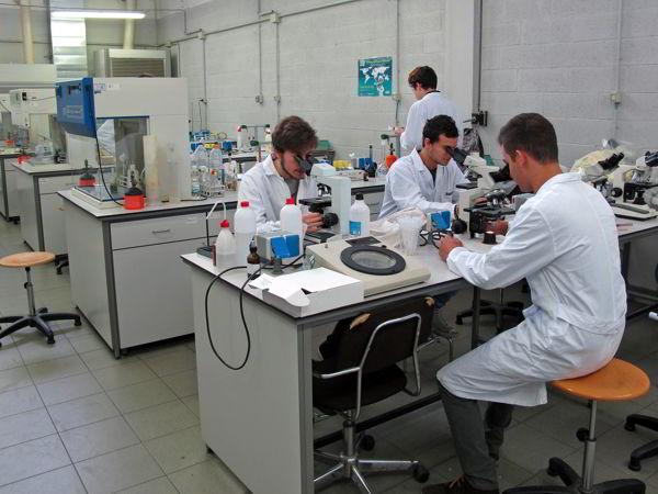 Sperimentazione animale: l'Università di Cagliari chiede di non fermarla