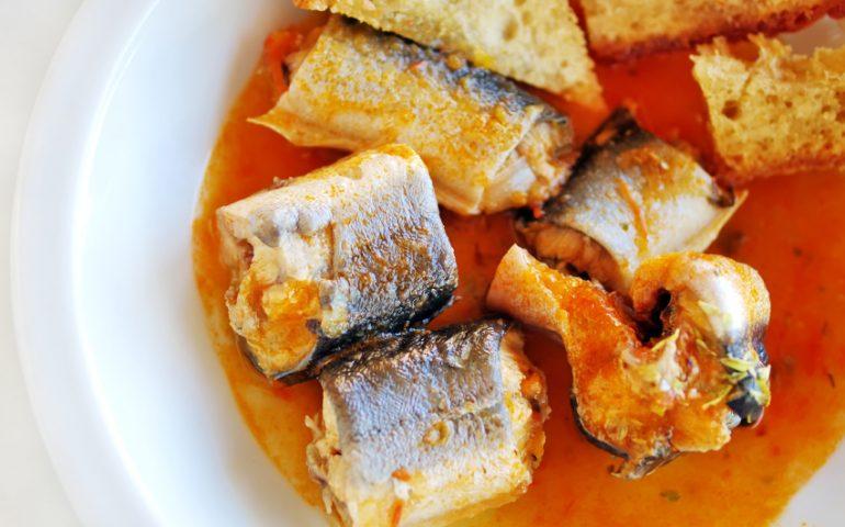 """La ricetta Vistanet di oggi: """"Filatrotta"""", l'anguilla più saporita, cucinata in umido"""