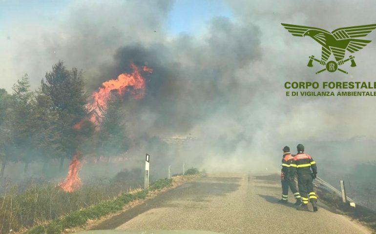 Sardegna messa in ginocchio dagli incendi: oggi 16 roghi, 4 dei quali spenti dai mezzi aerei