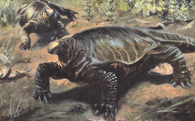 Lo sapevate? L'alierasauro, un gigantesco dinosauro vissuto in Sardegna 270 milioni di anni fa