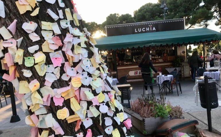 La foto. Cagliari, l'albero dei messaggi in viale Buoncammino