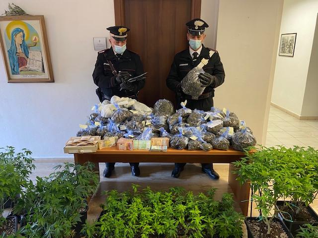 Più di 10 kg marijuana nel negozio di cannabis legale: in manette coppia di 45 e 30 anni