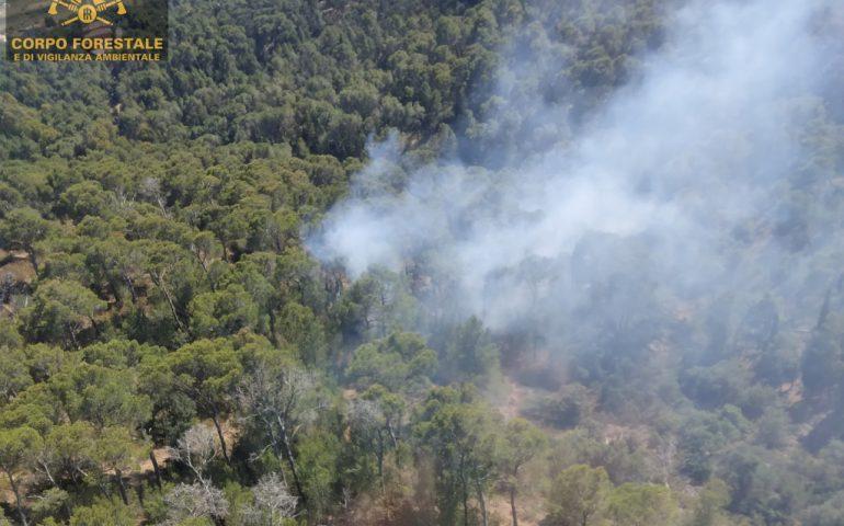 Sinnai brucia ancora, incendio a Riu is Cracuraxius nei pressi della Pineta: intervento del Corpo Forestale