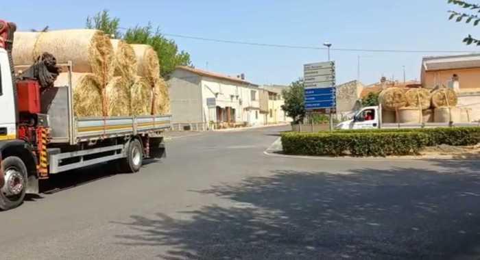 Una carovana di aiuti dei pastori sardi per il Montiferru