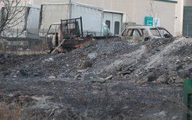 Roghi nell'Oristanese, strage di animali. E gli incendi sono ancora attivi