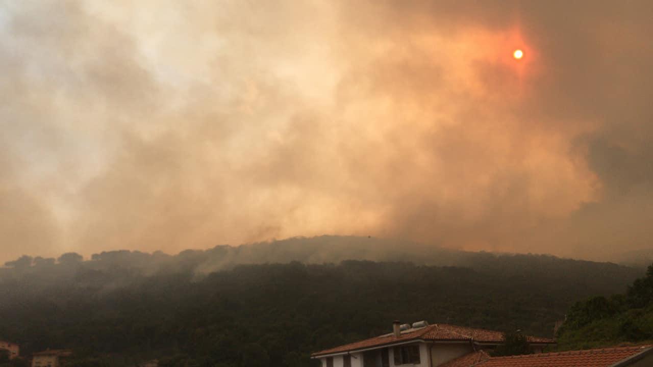 Incendio nell'Oristanese: Procura apre indagine per incendio colposo aggravato