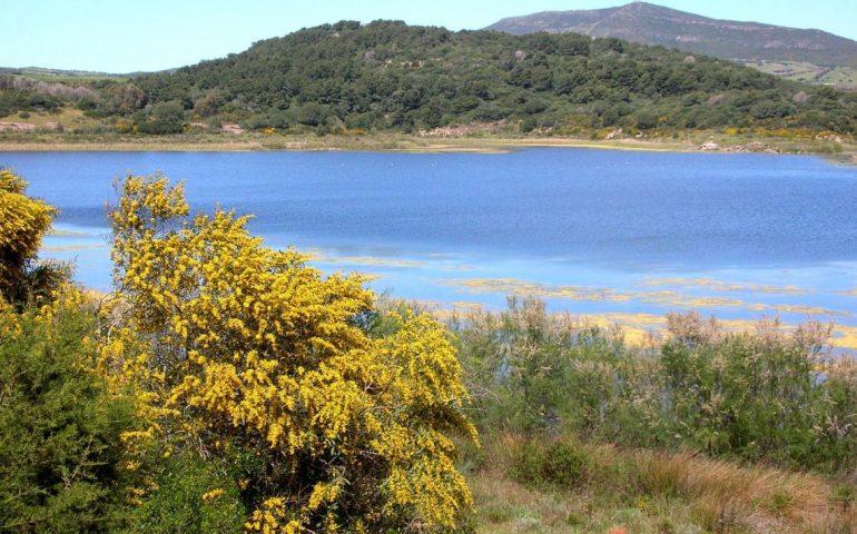 Lo sapevate? Il lago di Il Baratz è l'unico bacino naturale della Sardegna