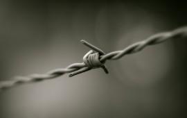 muro filo spinato