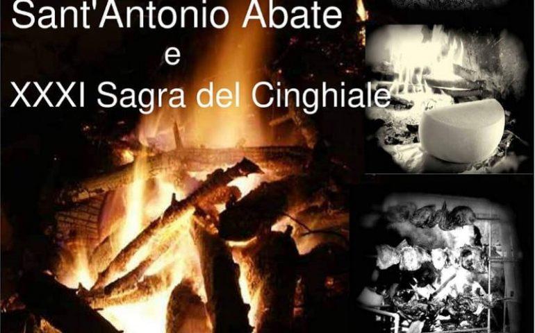 Gairo, presto doppio appuntamento: festeggiamenti in onore di Sant'Antonio Abate e XXXI Sagra del Cinghiale