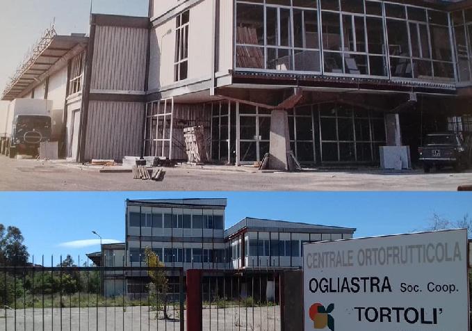 """La Centrale Ortofrutticola di Tortolì: confronto tra passato e presente. Un lettore: """"Oggi le arance le lasciamo marcire sugli alberi"""""""