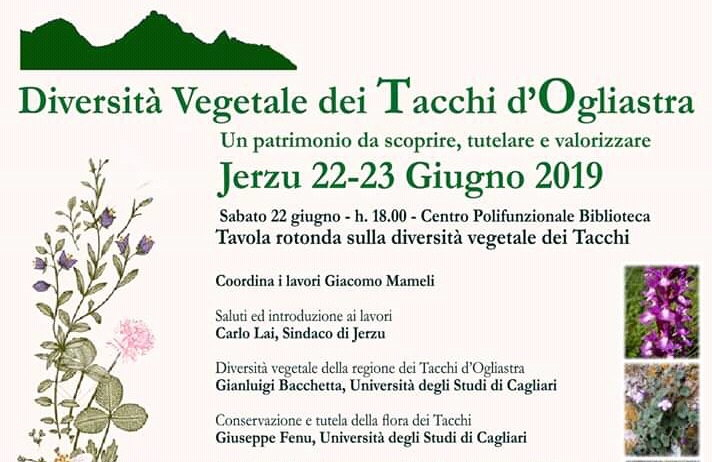 Jerzu, tavola rotonda sulla flora dei Tacchi. Presente anche l'assessore regionale all'ambiente