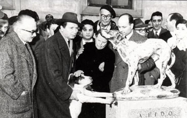 Accadde oggi. 9 giugno 1958: muore Fido, il cane che per 14 anni aspettò il padrone (morto) alla fermata del bus
