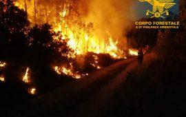 Sardegna in fiamme, il Servizio regionale antincendio del Corpo forestale al lavoro in Ogliastra, Carbonia, Ittiri, Santolussurgiu e Muros