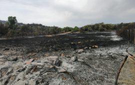 Incendio Tortolì. Solinas: «Caccia ai responsabili di questo disastro»