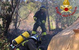 Paura a Tortolì: fiamme nei pressi di un'abitazione