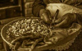 BARÌSCATTA, il Concorso Fotografico dedicato al mondo agropastorale è alla III edizione (REGOLAMENTO)