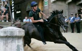 La Sardegna al palio di Siena: il fantino Stefano Piras ha montato per la contrada dell'Aquila