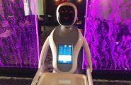 A Cagliari la prima cameriera robot: porta le ordinazioni di un Sushi Bar