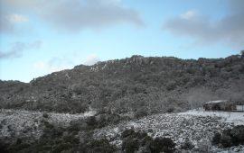 Esisteva un oracolo nel Monte Arcuerì?