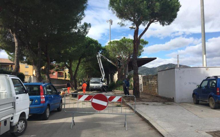 Tortolì, potatura dei pini e messa in sicurezza dei marciapiedi: Via Scorcu si fa bella