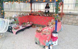 Tortolì, i mercatini natalizi rimangono al buio