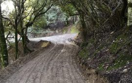 La fotonotizia. Strade rurali a Gairo: sistemazione della via in località Mainesa