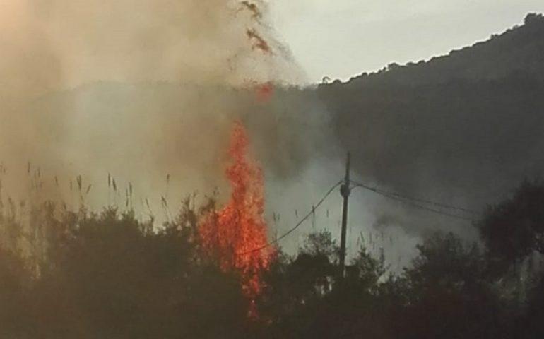 Fiamme in un canneto: nuovo incendio a Bari Sardo