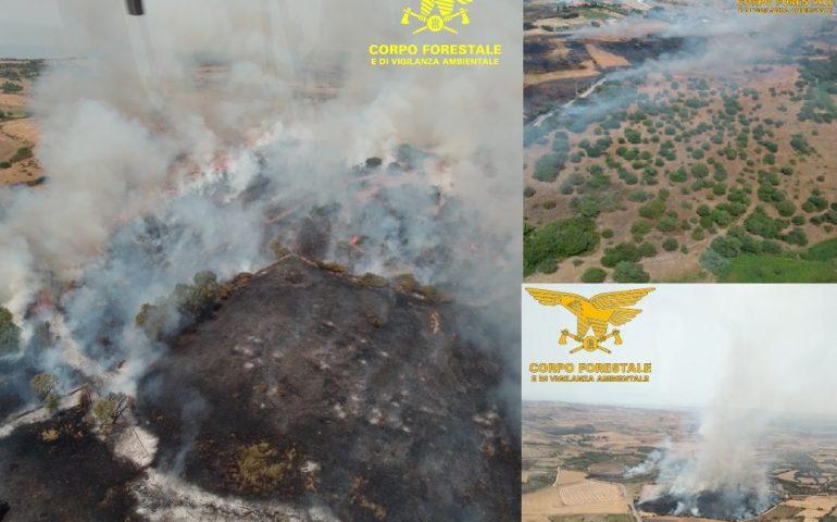 Anche oggi ben 11 incendi in Sardegna: tre gravi