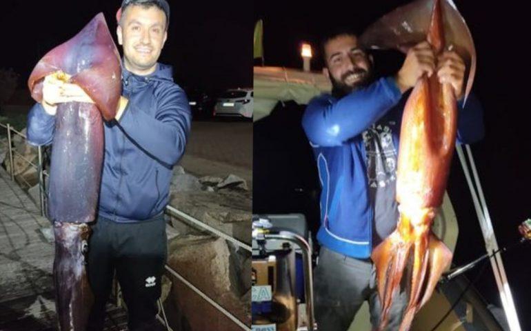 (FOTO) Tortolì, due amici pescano un totano da record: 10,5 Kg di peso