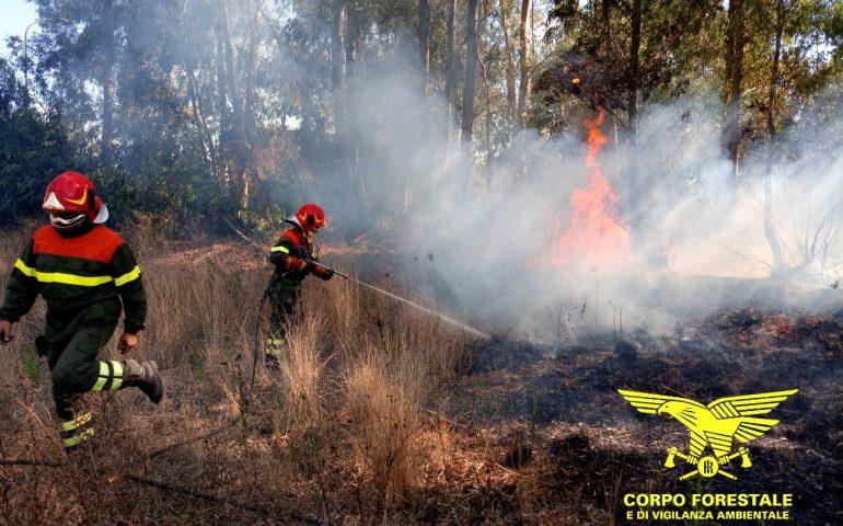Ancora incendi a Nuoro: il corpo forestale difende con l'acqua le campagne in fiamme