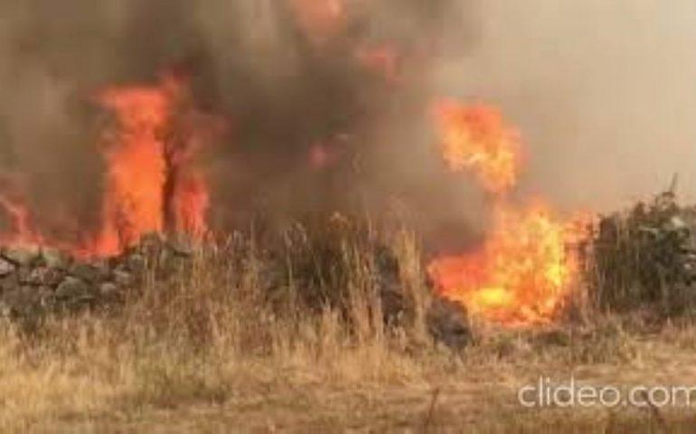 Spaventoso incendio in Sardegna, le fiamme nel cuore del centro abitato: intervento di uomini ed elicotteri