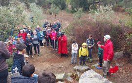 Ilbono, grande partecipazione alla passeggiata tra gli olivi secolari