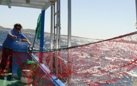 Gac della Sardegna orientale: nuovo piano d'azione e nuovo Consiglio direttivo dell'associazione