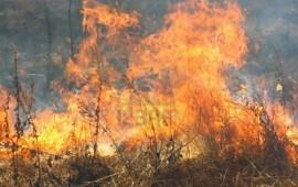 Ancora incendi in Ogliastra, fiamme a Monte Terli
