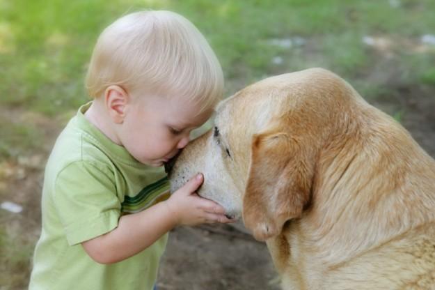 La Veterinaria risponde. Quali razze di cane sono più adatte ai bambini?