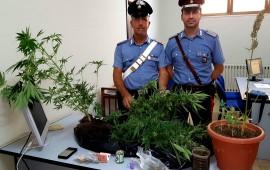 Arrestato 46enne di Tortolì trovato in possesso di droga ai fini di spaccio