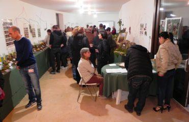 Tortolì, alla scoperta di funghi, bacche e frutti selvatici d'Ogliastra nella mostra all'ex Blocchiera