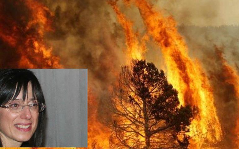 Piano antincendio 2017-2019: la Regione punta su prevenzione e tecnologia
