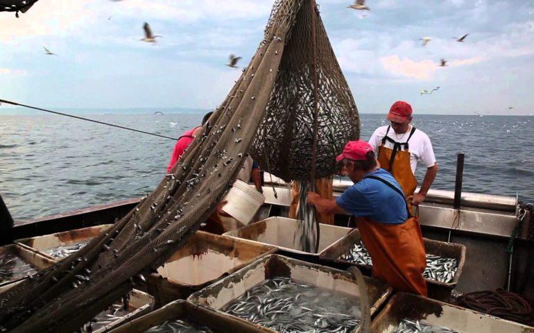 Pesca, 15 bandi per oltre 14 milioni di finanziamenti per i pescatori sardi