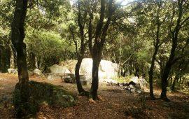 Bosco Selene ( foto Sardinia Trail)