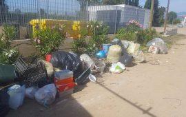 I rifiuti trovati alla Sughereta