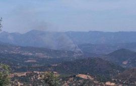 Ancora fiamme in Ogliastra. Uomini e mezzi antincendio in azione tra Arzana e Villagrande