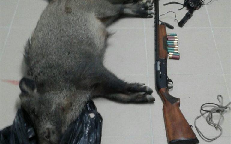Bracconieri con cinghiale abbattuto e fucili: la Forestale denuncia due uomini